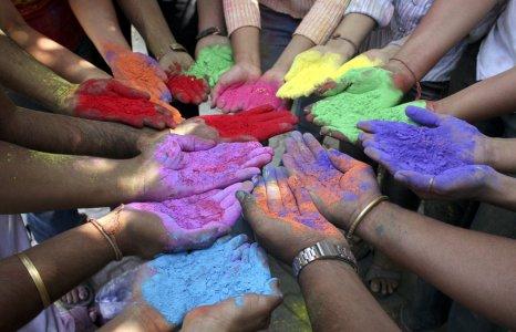 festa colors