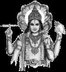 portada arrels hindus